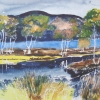 Aquarelle_Landschaften 2-6-49_baeume-am-fluss