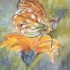 Aquarelle_Tiere 5-2-14_schmetterling